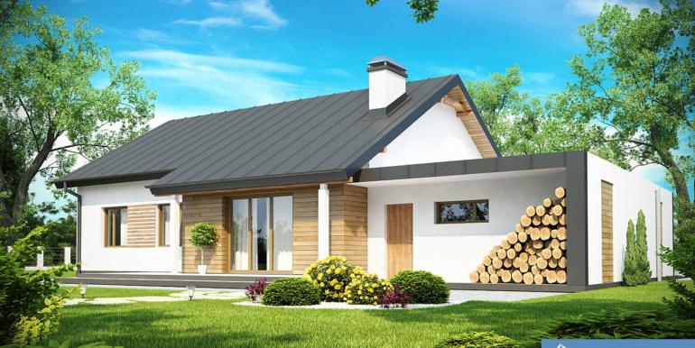 Proiect-casa-Parter-cu-Garaj-182011-2