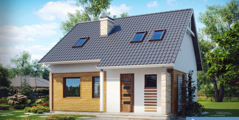 Proiect-casa-cu-mansarda-102011-1