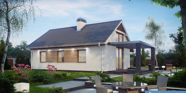 Proiect-casa-parter-139012-1