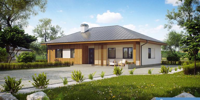Proiect-casa-parter-176011-1