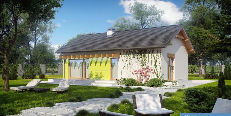 Proiect-casa-parter-249012-3