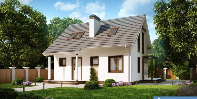 Proiect-casa-parter-mansarda-212012-2