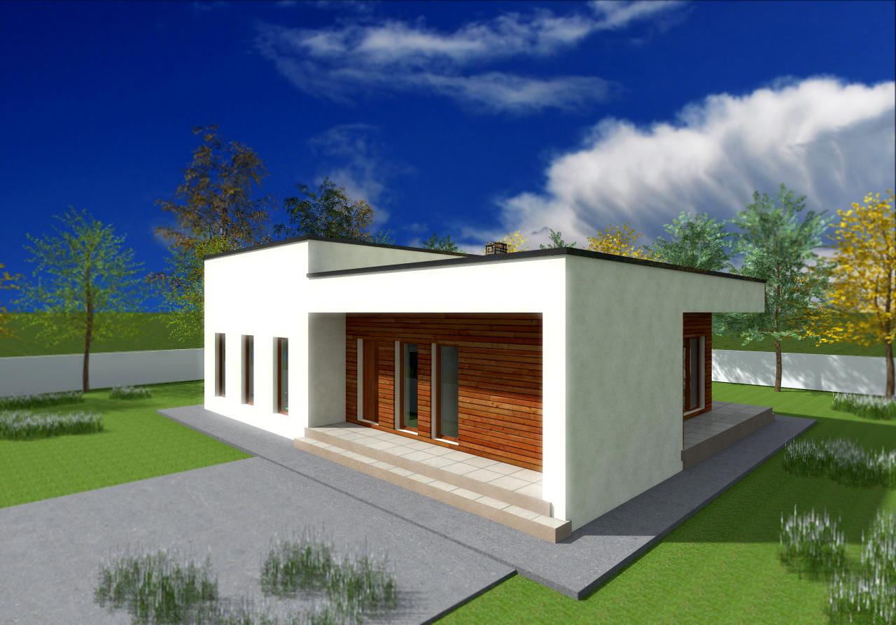 Proiect de casa cu parter 242