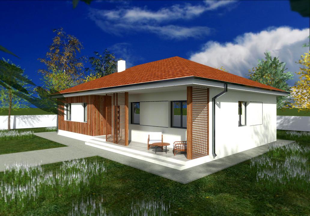Proiect de casa cu parter 248