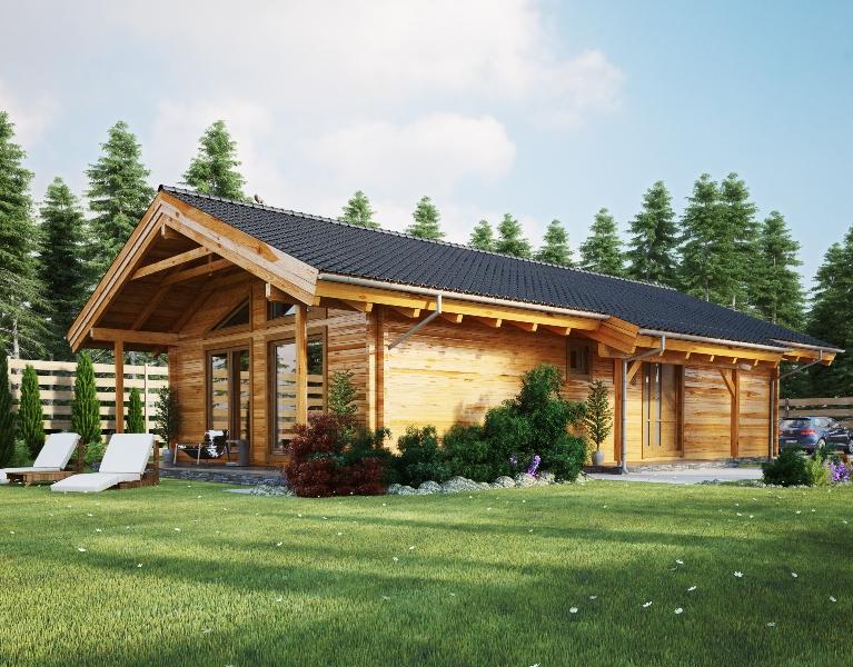 Proiect de Casa cu parter 355