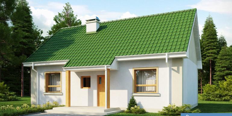 Proiect-de-casa-mica-Parter-12011-1