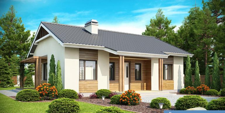 Proiect-de-casa-mica-Parter-136011-1