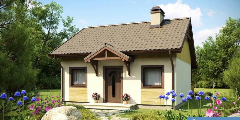 Proiect-de-casa-mica-Parter-60011-1
