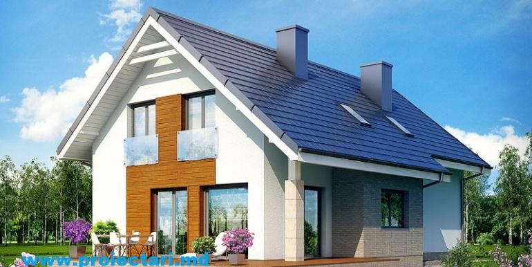 1 Fatada casa cu mansarda 3d