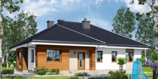 Proiect de casa cu parter -100612