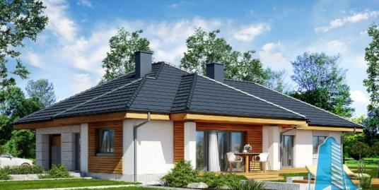 Proiect de casa cu parter si garaj pentru un automobil-100687