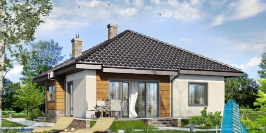 Proiect de casa cu parter -100628