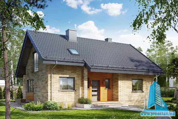 Proiect de casa cu parter, mansarda si demisol-100718