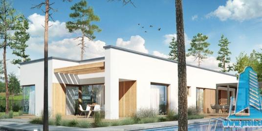 Proiect de casa cu parter si garaj pentru doua automobile-100690