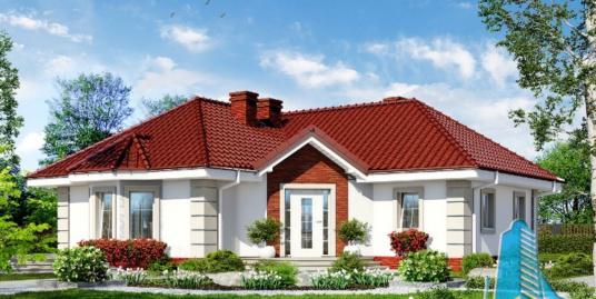 Proiect de casa cu parter – 100659