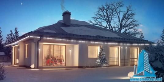 Proiect de casa cu parter si garaj pentru doua automobile -100760