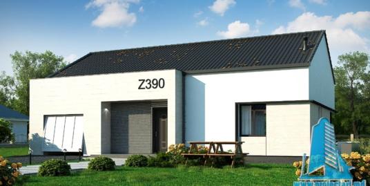 Proiect de casa cu parter si garaj pentru un automobil-100809