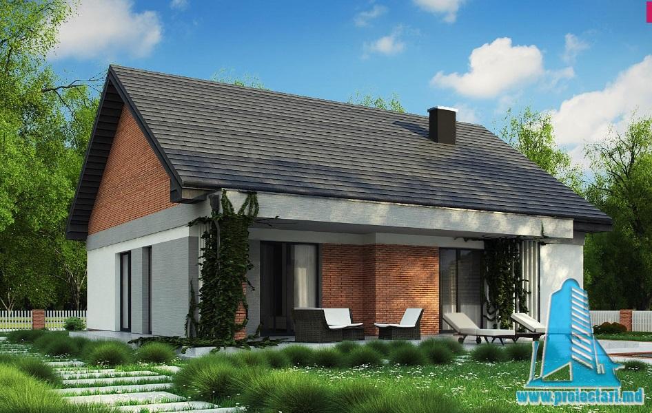 Proiect de casa cu parter -100743