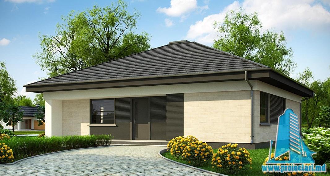 Proiect de casa cu parter -100821