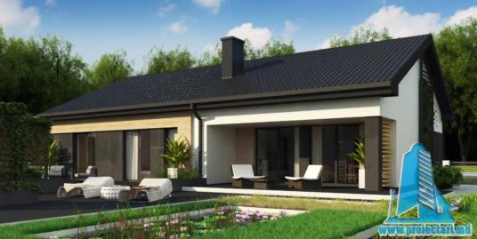 Proiect de casa cu parter -100755