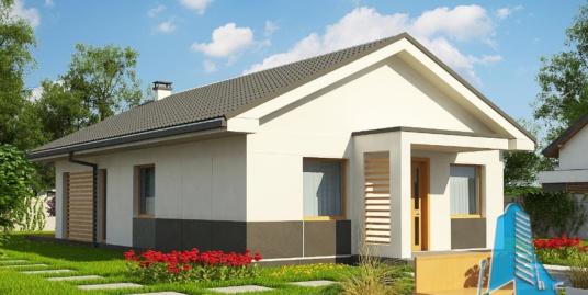 Proiect de casa cu parter -100767