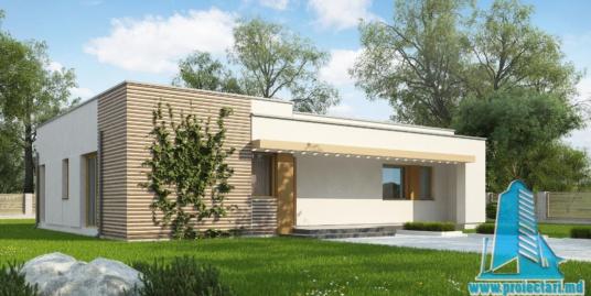 Proiect de casa cu parter -100773