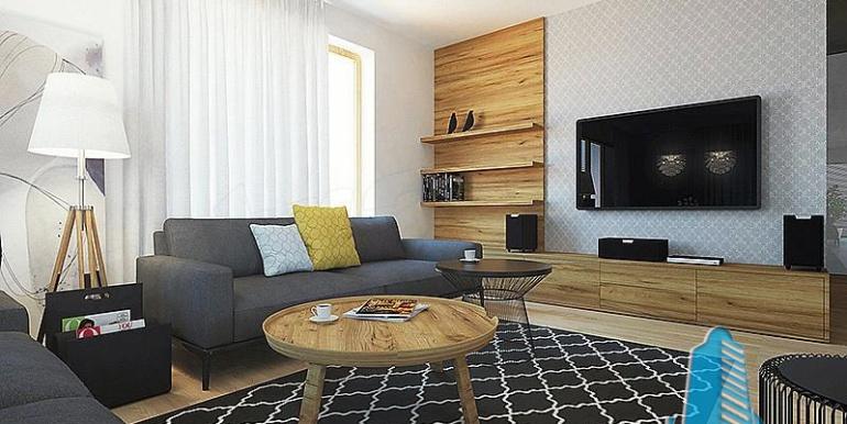proiect-de-casa-cu-parter-si-garaj-pentru-2-automobile-desing-interior-salon-1