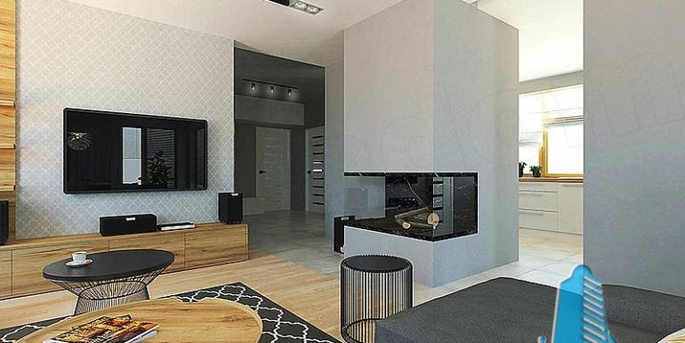 proiect-de-casa-cu-parter-si-garaj-pentru-2-automobile-desing-interior-salon