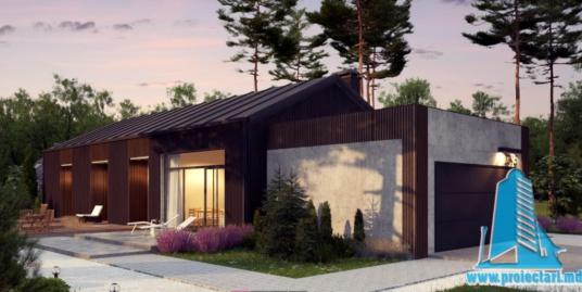 Proiect de casa cu parter si garaj pentru doua automobile-100753