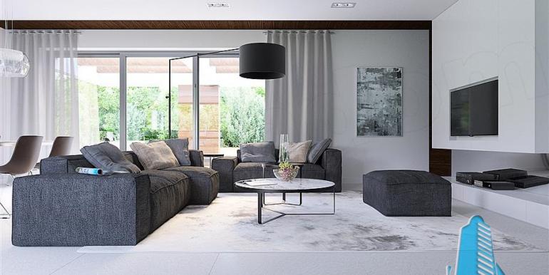 proiect-de-casa-cu-parter-si-garaj-pentru-doua-automobile-design-salon2