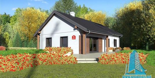 Proiect de casa cu parter – 100796