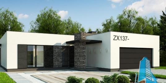 Proiect de casa cu parter si garaj pentru doua automobile-100849