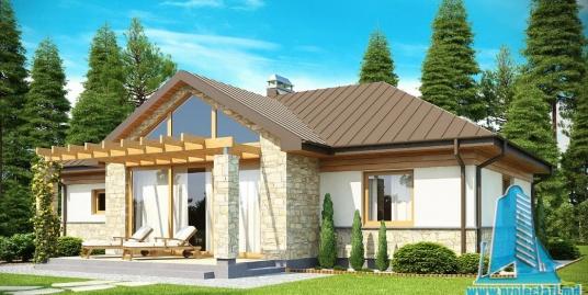 Proiect de casa cu parter si garaj pentru un automobil-100870