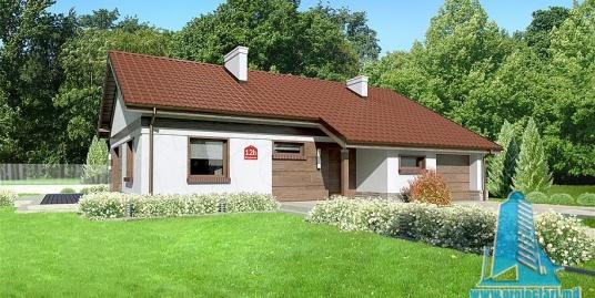Proiect de  casa cu parter si garaj pentru un automobil-100826