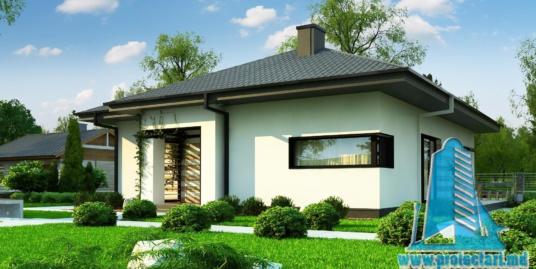 Proiect de casa mica cu parter-100945