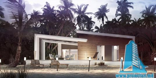 Proiect de casa cu parter cu terasa frumos amenajata-100953