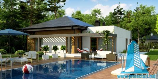 Proiect de casa cu parter si bazin – 100949