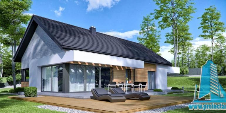 Casa cu parter