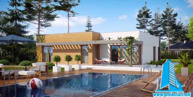 piscina pentru Proiect de casa cu parter si garaj cu acoperis plat
