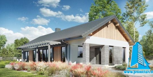 Proiect Casa cu parter  si piscina 150.7m2  – 101096