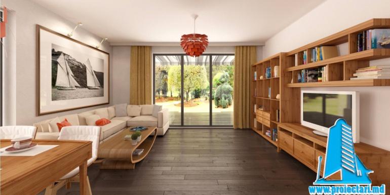 salon proiect de casa cu parter