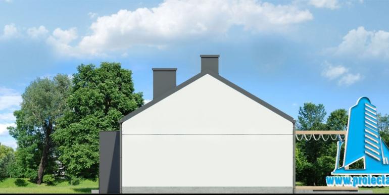 fatada 2 проект одноэтажного дома